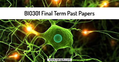 Final-Term: Pak301-midterm solved papers with best solution