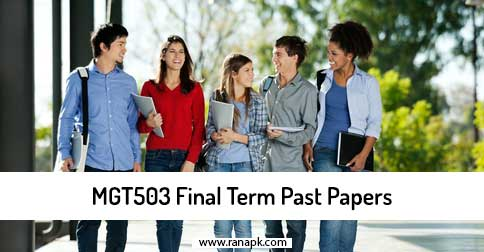 solved final term paper mgt503