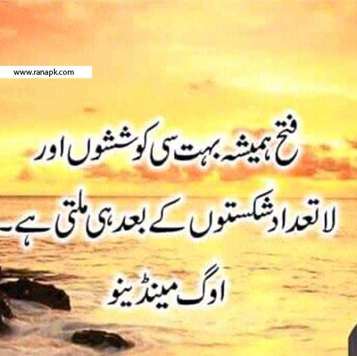 Urdu Quote Aqwal Zareen Urdu Qoal Zamana