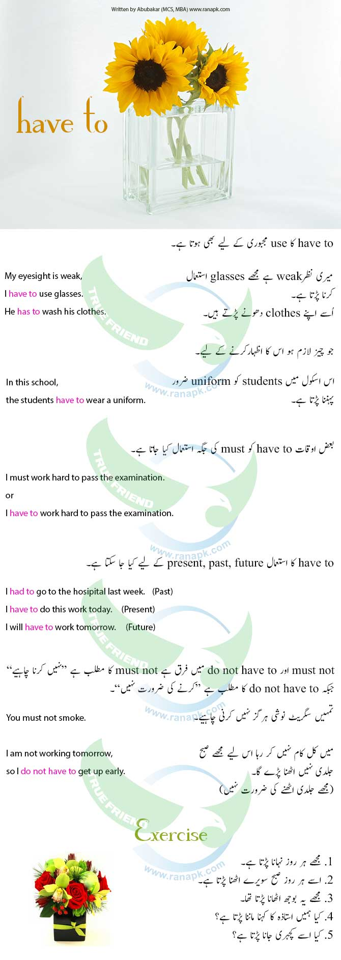 use of have to in urdu